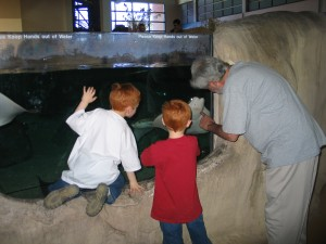 Brandon, Dylan and Jim check out a Sea Turtle